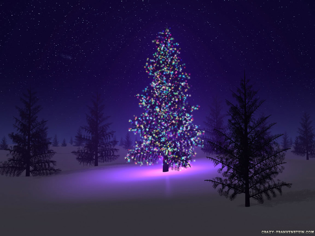 Christmas Canon.Christmas Playlist Christmas Canon By Trans Siberian