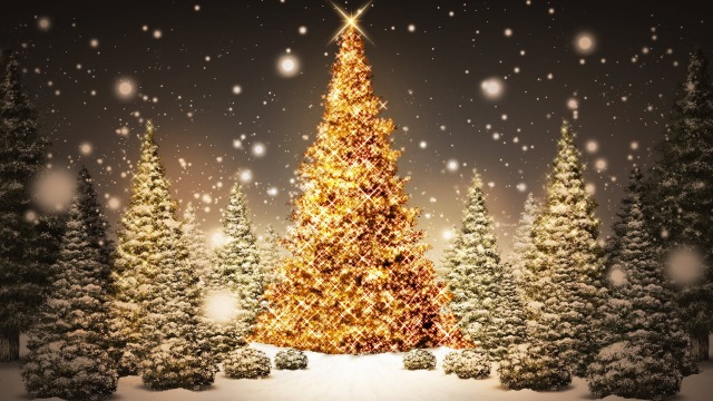 Glowing-Christmas-Trees_FullHDWpp_com_