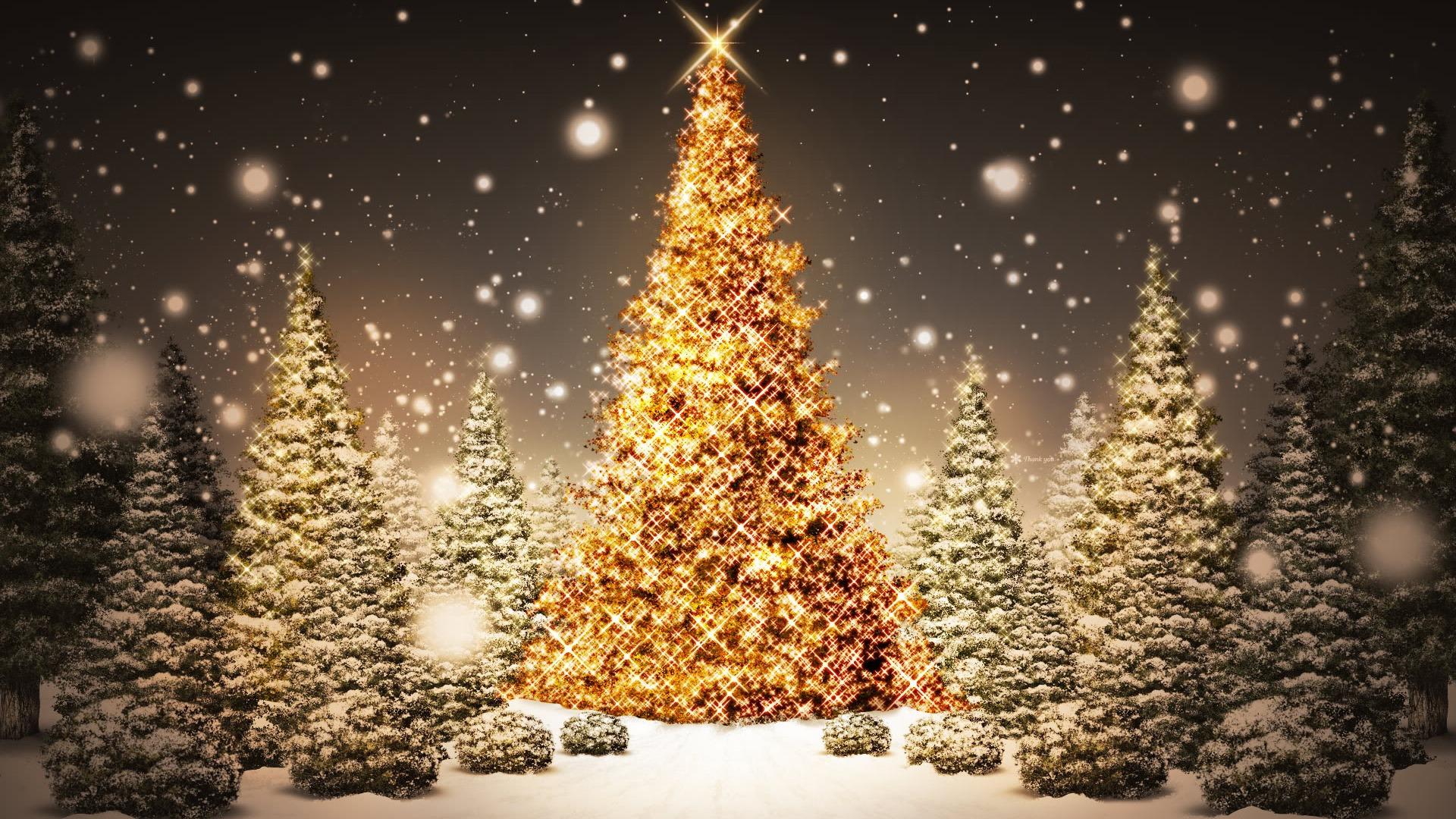 christmas eve in sarajevo